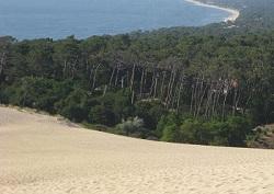 Vue sur le bassin d'Arcachon depuis la dune de Pilat